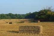Farmland, Checkendon