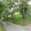 Lane up the hillside above Thomastown