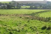 Farmland, Steelend
