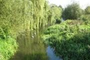 River Colne in Watford