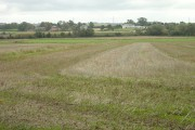 Farmland near Ruddington