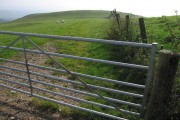 Wide views