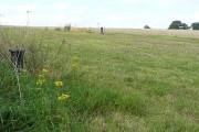 Farmland at Four Elms