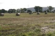 Bales at Balerno