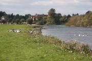 River Great Ouse near Earith