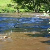Unusual Flood Height Monitor