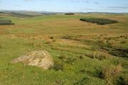 Farmland at Powhaffet