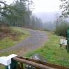 Forest track at Ffynnon Dwym
