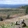 West from Mynydd Gethin Forest
