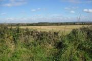 Oxpasture Lane - Farmland View