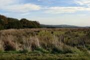 Hirwaun Common
