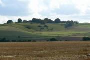 Farmland west of Quarley