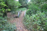 Bridge over Cogshall Brook in Kennel Wood