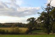 Pastures, Ufton Nervet