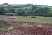 Field by Occombe Cross
