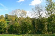 View towards Avenis Green, near Chalford
