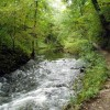 River Wye at Miller's Dale
