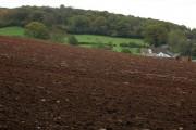 Dunbridge Farm