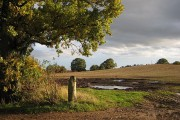 Field entrance, Bromesberrow