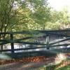 Duck Pond - Gomersal Park Hotel - Mill Lane, Birkenshaw