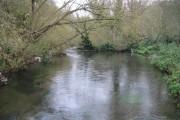 River Colne in Rickmansworth