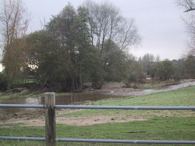 River Otter near Gosford
