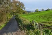 Farmland and road near Winchcombe