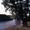 Moat around Fort Brockhurst (5)