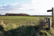Towards Cawkeld Chalk Pit