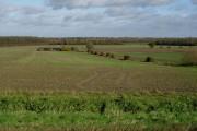 Farmland east of Madingley