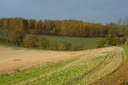 Farmland, Middle Assendon