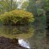 Quarrymill Pond