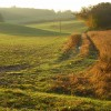 Farmland and track, Binfield Heath