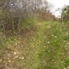 Path on Erewash Field