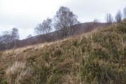 On Moor above Old Croftland near Druimarbin