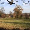 Parkland near Dedham