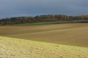 Farmland, Goring