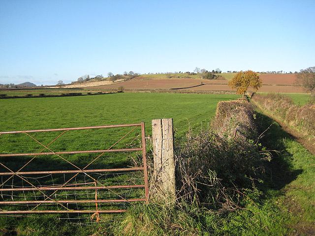 Farmland off Wellington Lane