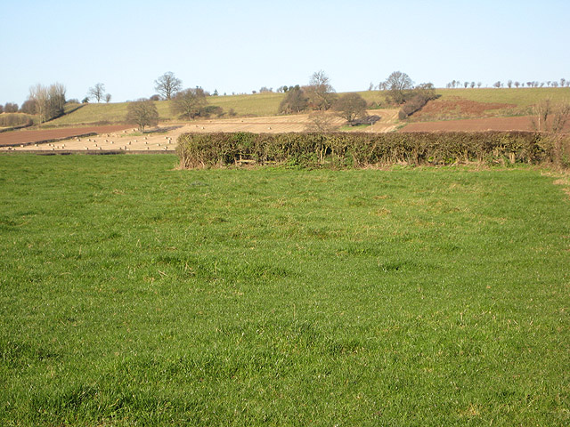 Patchwork of pasture and arable land