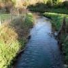 Wellington Brook