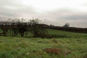 Farmland near Gringley on the Hill