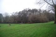 Woodland on the edge of Grosvenor Recreation Ground