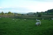 Farmland near Pen-yr-allt