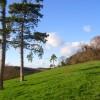 Pasture, Hughenden