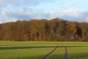 Farmland, Bix