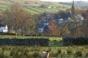 Pasture, Alston