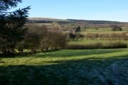 View across Cwm Crai towards Glasfynydd Forest