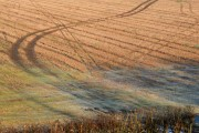 Frosty Field near Ockbrook