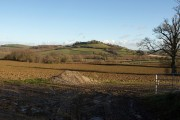 Towards Blackler Barton