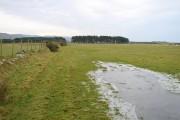 Frozen, flooded farmland